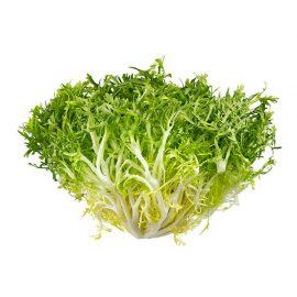 Frisse Lettuce