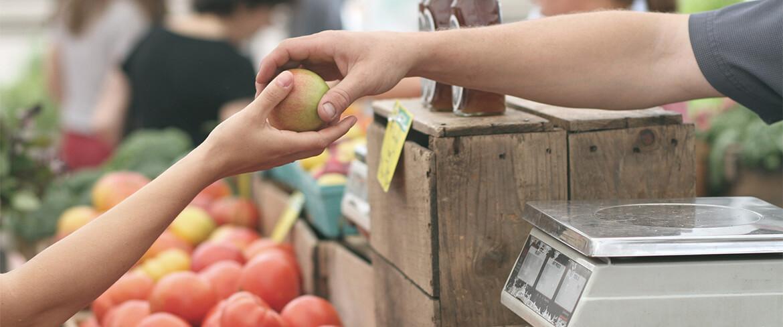 How Aquaponics Farms can Feed Communities