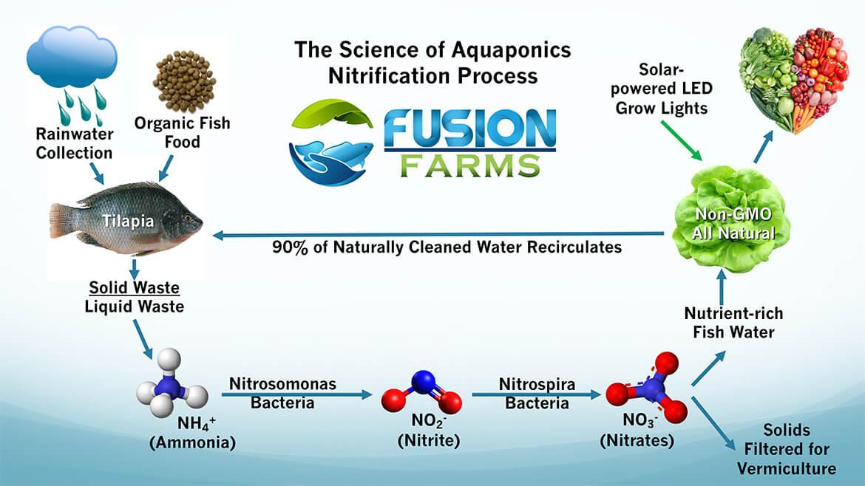 Fusion Farms Science of Aquaponics LJ