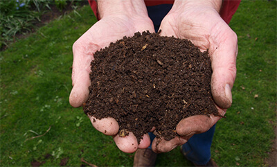 Soil in his hands